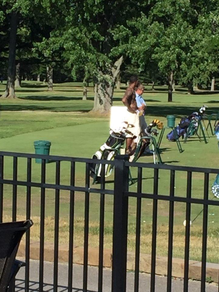 jr_golf_shirtless.jpg