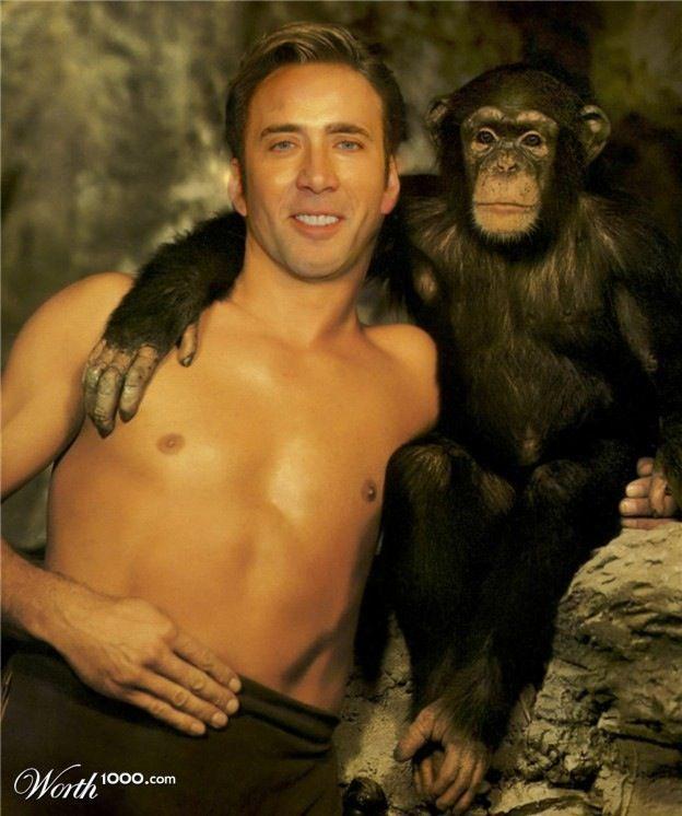 niccage_monkey1